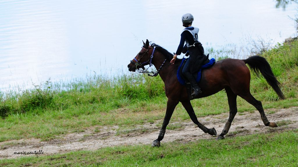 endurance escourou 5