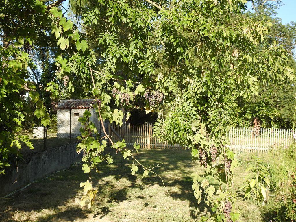 jardin-insolite-3