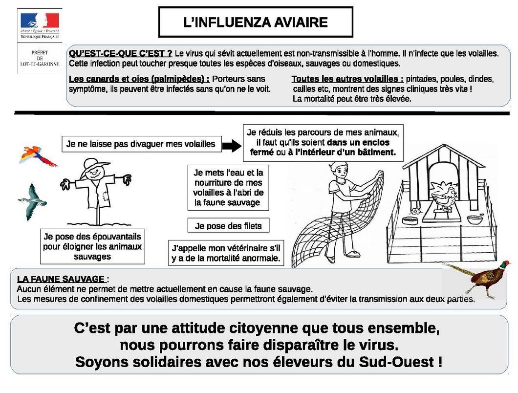mesures-securite-grippe-aviaire