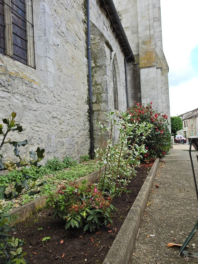 Plantation devant l'église